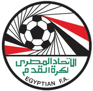Egypt DLS Logo