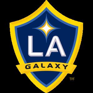 LA Galaxy DLS Logo