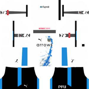 Kawasaki Frontale DLS Away Kit