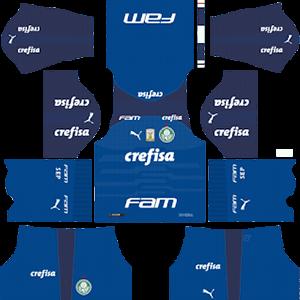 Palmeiras DLS Goalkeeper Home Kit