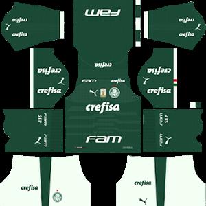 Palmeiras DLS Home Kit